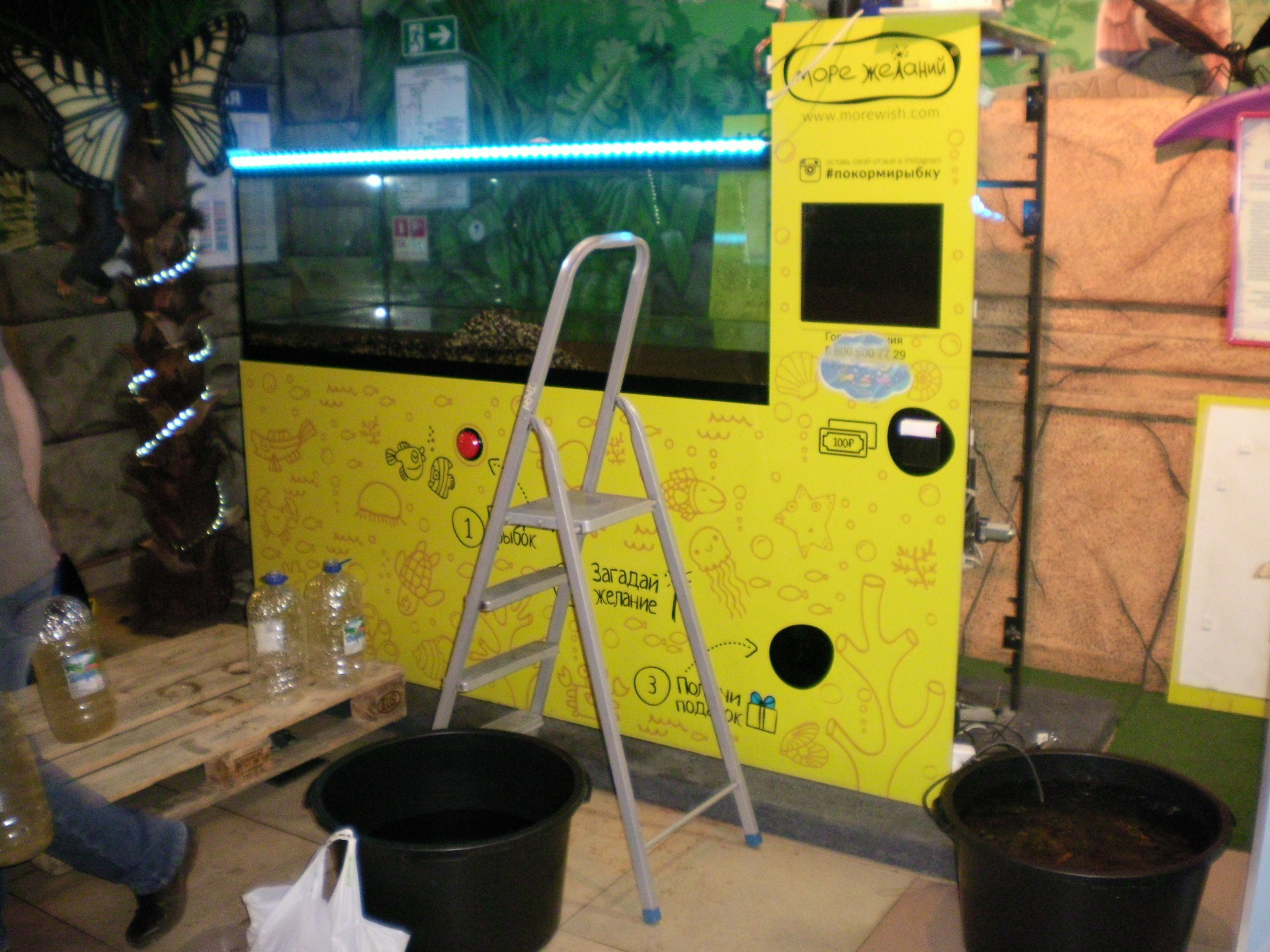 аквариум перед перевозкой
